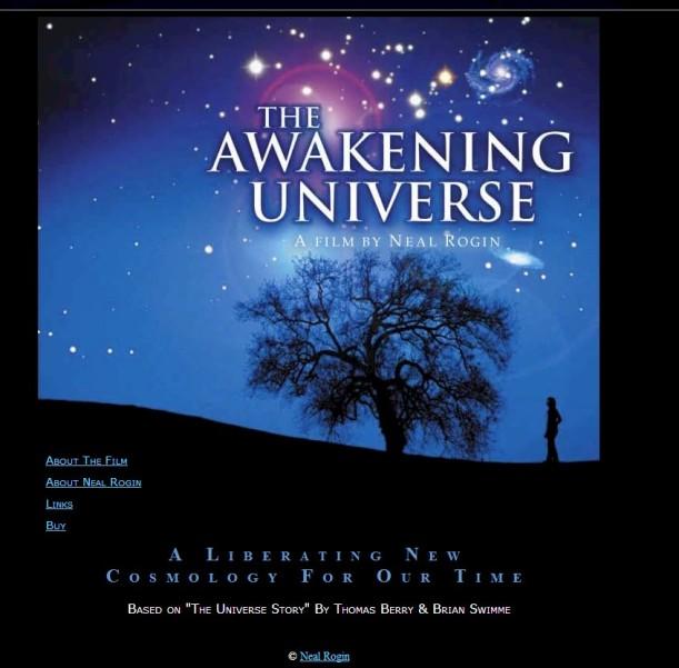 The Awakening Universe