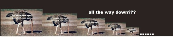 ostrich all the way down