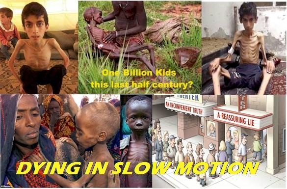 Starvation1